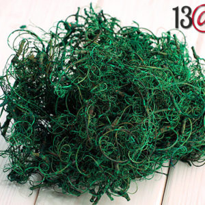 Decorative Twigs - Green